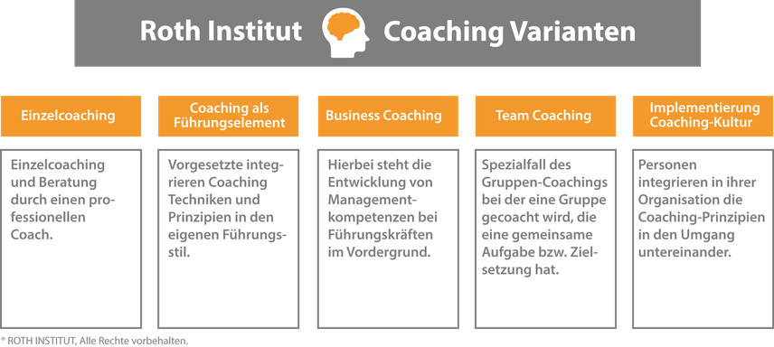 Säulen der ROTH INSTITUT Coaching Varianten