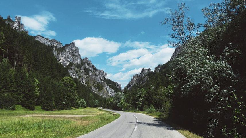 BIGOUSTEPPES SLOVAQUIE MALA FATRA MONTAGNE FORET ROUTE