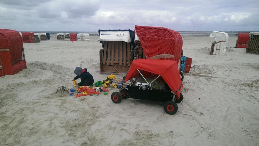 Strandequipment, Fotoausrüstung, Angelsachen - ulfBo das Transportwunder