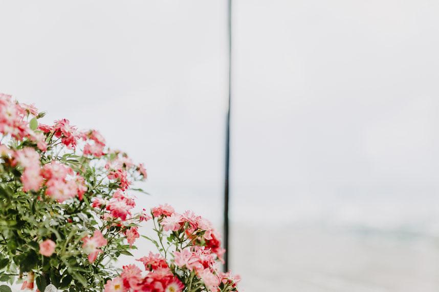 Blumen - Hochzeitsdeko