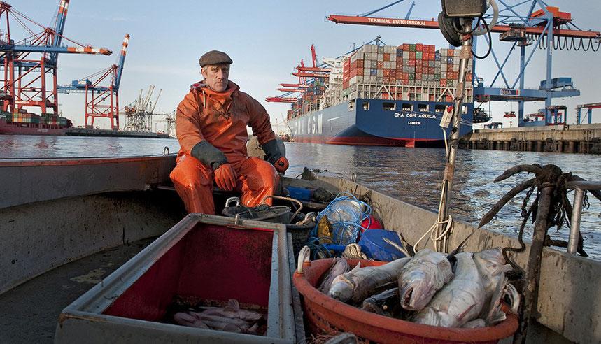 einer von fünf Berufsfischer auf der Elbe auf Hamburger Gebiet. Containerschiff CMA CGM AQUILA liegt am Terminal der HHLA.