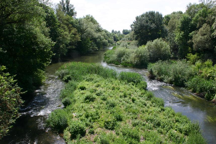Naturschutzgebiet Saumain, Schweinfurt