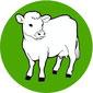 Infektionen mit Cryptosporidium bei Rindern