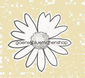 Gänseblümchenshop Gänseblümchen