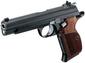 Pistole 25m