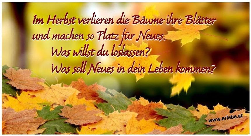 Im Herbst verlieren die Bäume ihre Blätter und machen so Platz für Neues. Was willst du loslassen? Was soll Neues in dein Leben kommen?