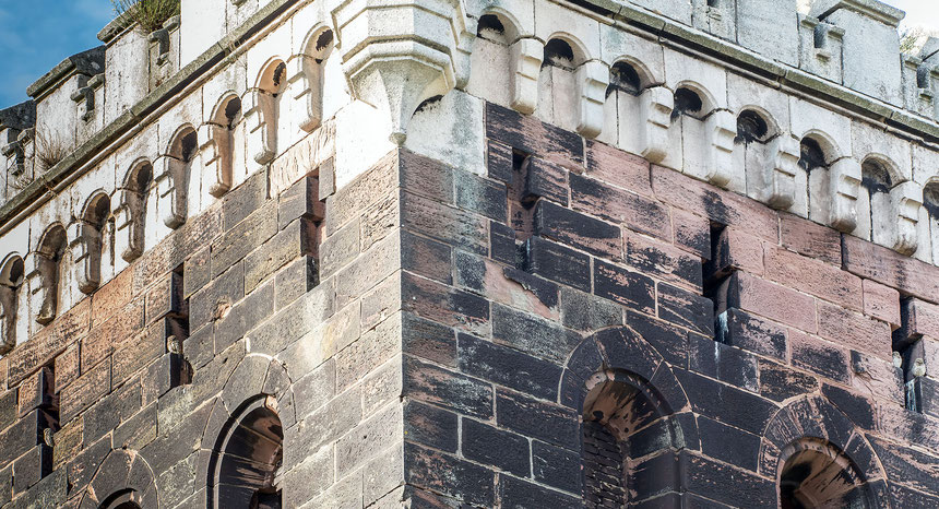 Familie Steinkauz, 2 Altvögel linke Turmseite, 2 Jungvögel rechte Turmseite.
