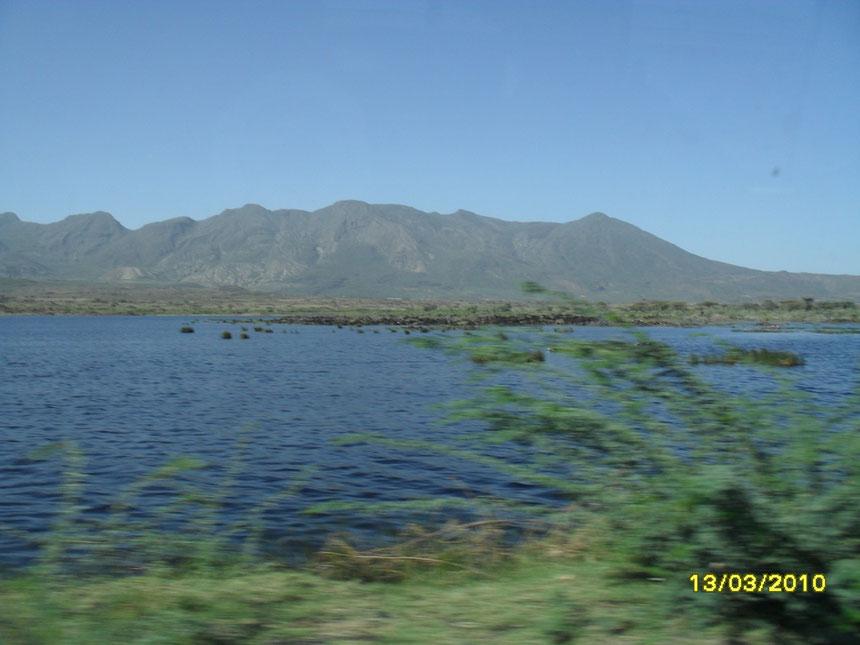Retour vers l'altitude, route d'Addis Abeba en longeant le lac de Métahara, proche de la réserve d'Awash. Les eaux ne cessent de monter depuis plusieurs années. Le lac recouvre maintenant la voiie ferrée Djibouti-Addis Abeba, désaffectée.