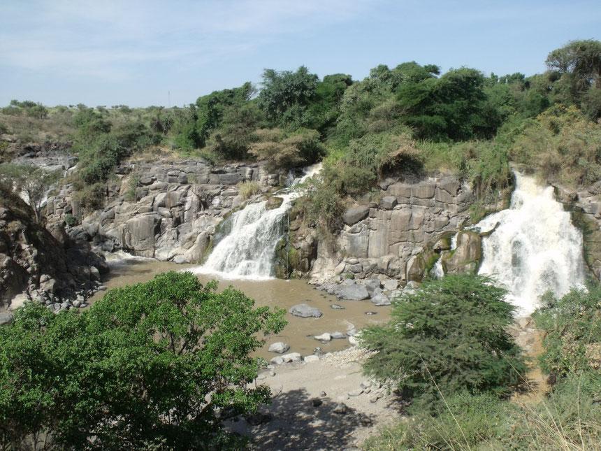 Les chutes de la rivière Awash, dans le parc animalier.
