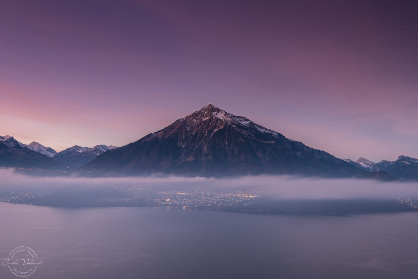 Niesen, Thunersee, Thun, Morgenrot, Sonnenaufgang, Berge, Alpen, Schweizer Alpen, Spiez, Sigriswil, Nebelschwaden