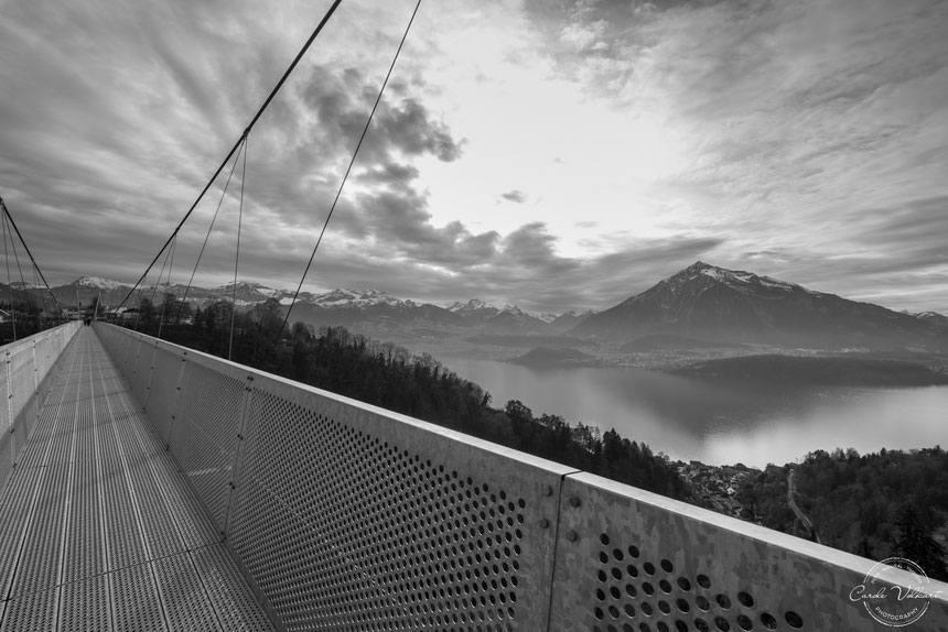 Panoramabrücke Sigriswil, Hängebrücke Sigriswil, Niesen, Thunersee, Thun, Spiez, Sigriswil