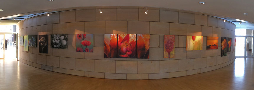 """Ausstellung, """"ZEIT & NATUR T(R)RAUM"""", Landtag, NRW, Annette Palder, Werk, """"natURGEWALT"""", tOG, take OFF GALLERY, Airport, Ruhrgebiet, Kulturmeile,"""