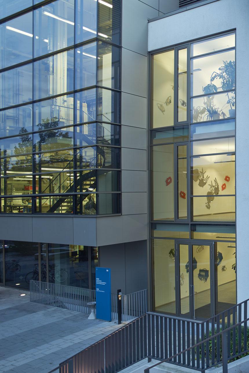 Kunst am Bau, Kunst, Zeichnung, Internationales getränkewissenschaftliches Zentrum Weihenstephan, Freising, Anthony Werner