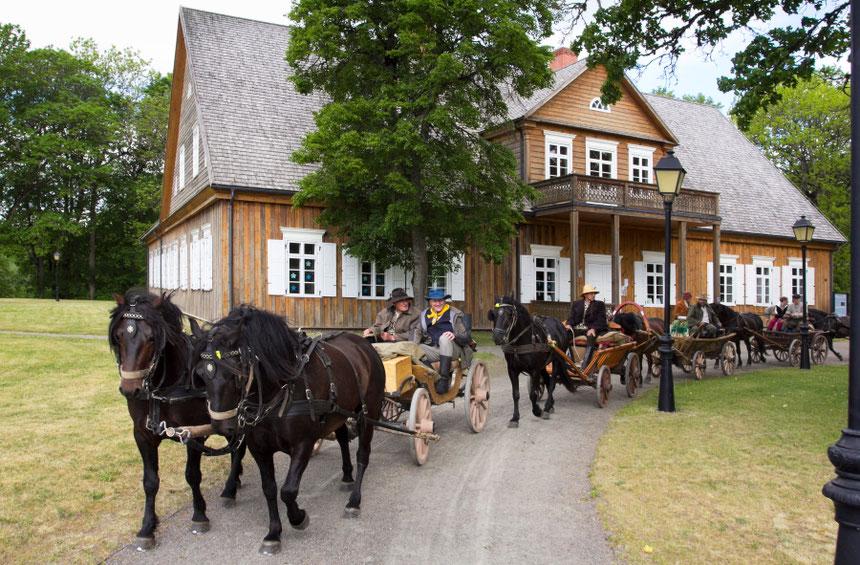 Žirgai su vežimais prie Biržuvėnų dvaro