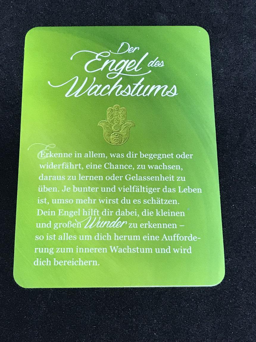 Ein Engel für jeden Tag (arsEdition) auf Phönixzauber / kostenlose Tagesbotschaft