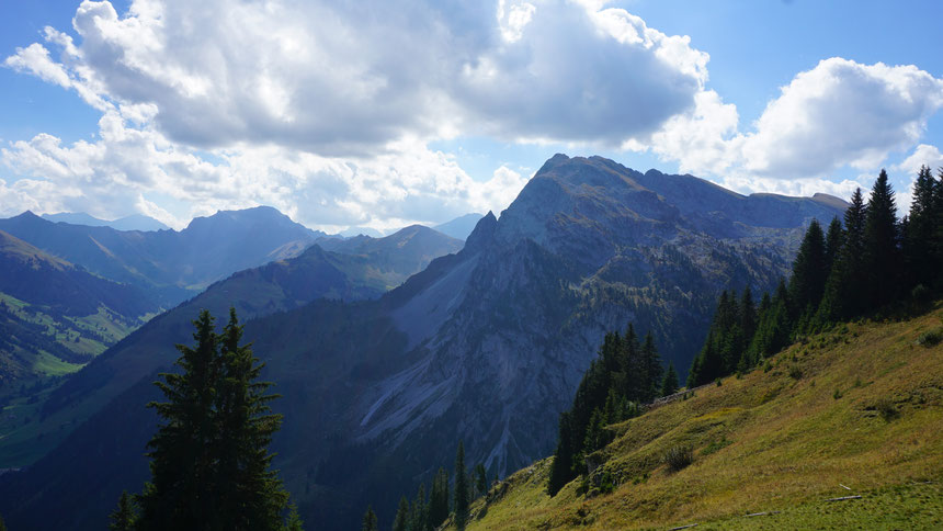 mountain panorama, Bergpanorama, Diemtigtal