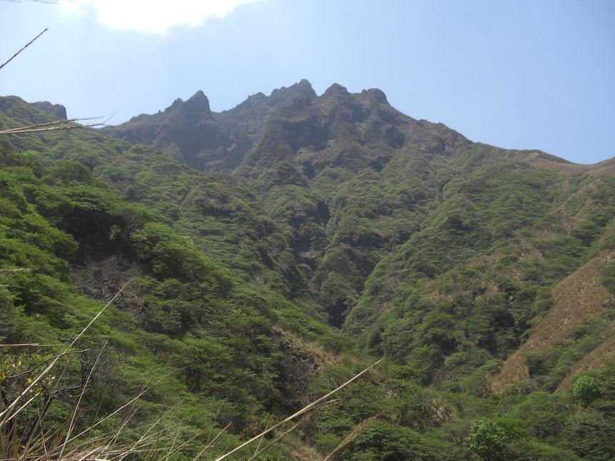 松ヶ尾谷へ下る途中より谷を望む