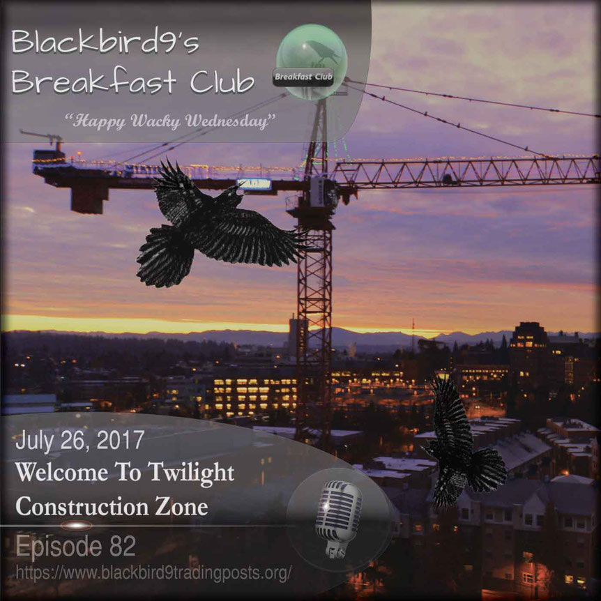Welcome To Twilight Construction Zone  Blackbird9