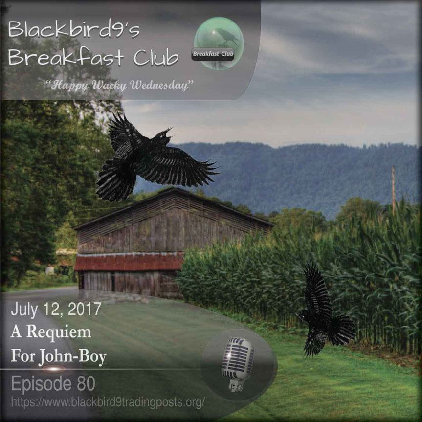 A Requiem For John-Boy  Blackbird9