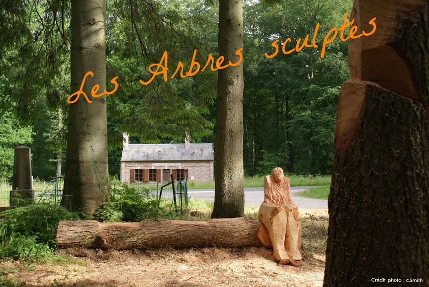 Forêt de Crécy-en-Ponthieu