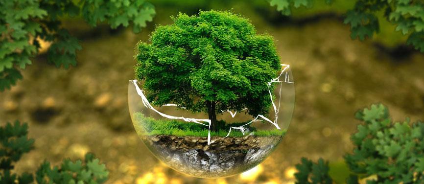 Umweltschutz in der Ferienwohnung am Attersee