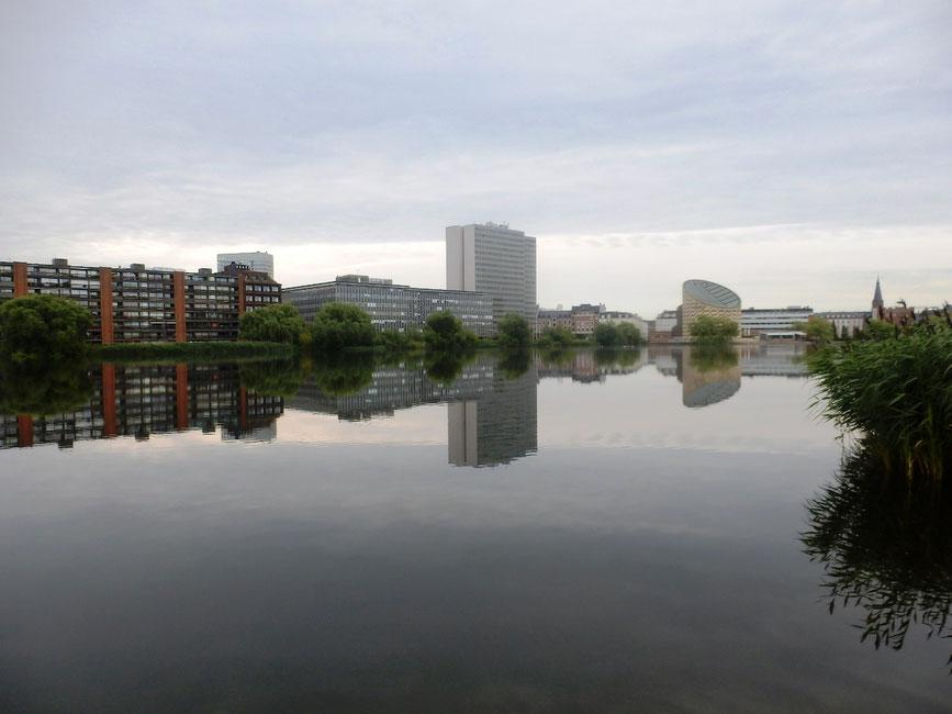 コペンハーゲンで過ごした早朝、こういう凪のような時間が大事だと思うようになりました
