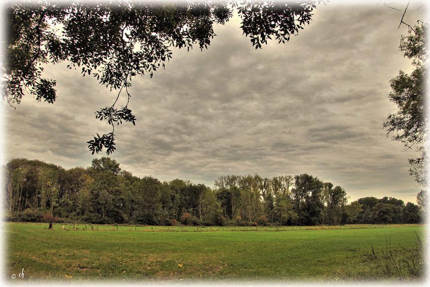 Auch eine graue Wolkendecke kann Schönes schaffen
