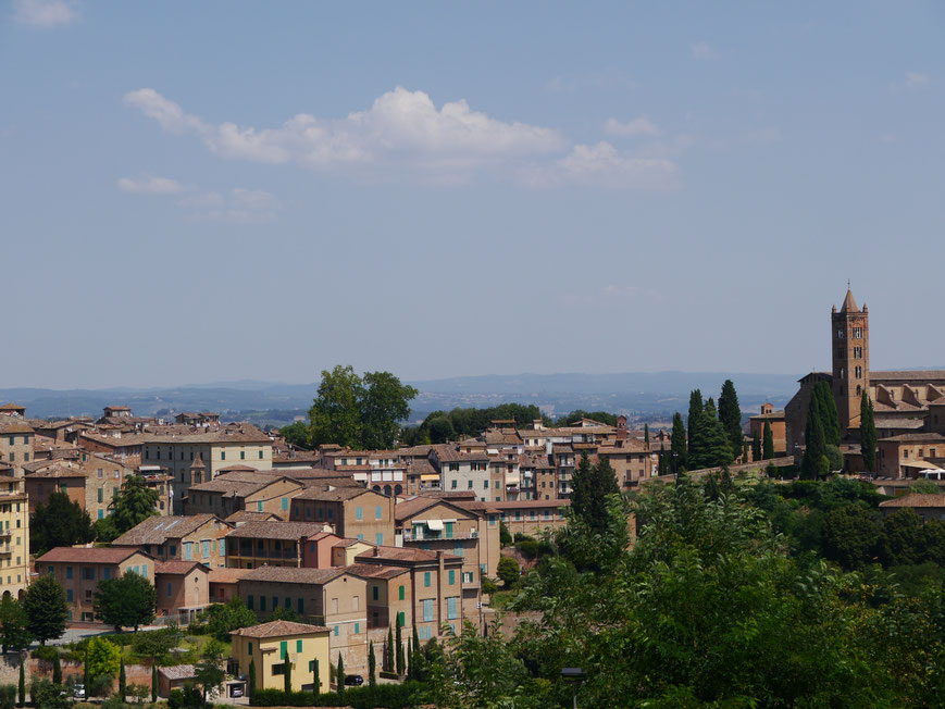 Aussicht über Siena