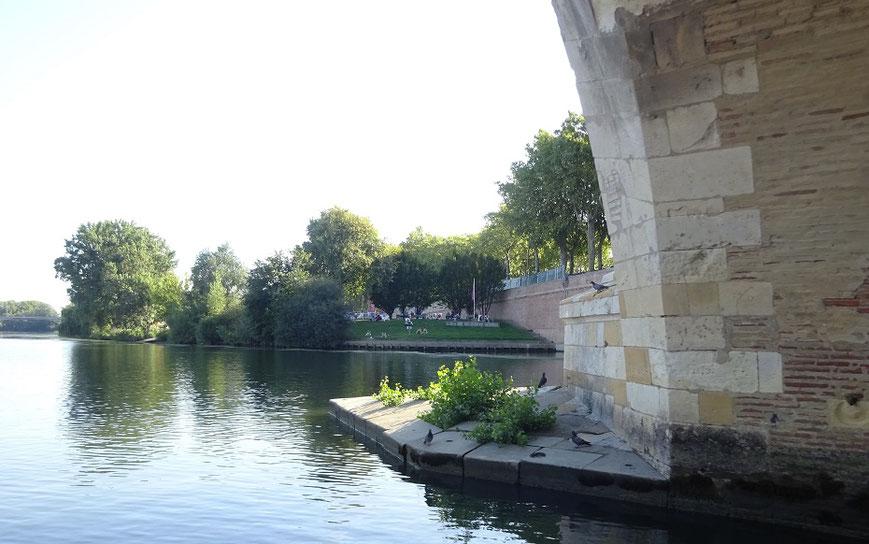 La Prairie des Filtres vue du bateau pendant une petite croisière sur la Garonne