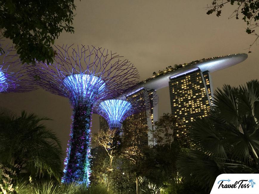 Waterval en tuinen Singapore Airport