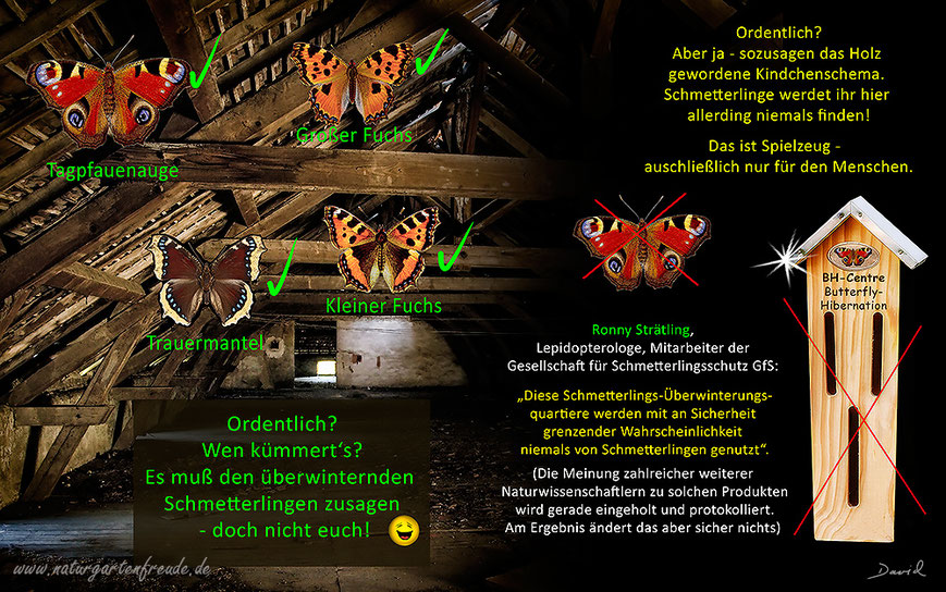 Insektenhotel insect hotel Nisthilfe nesting aid Insektennisthilfe Schautafel poster Schmetterling butterfly Überwinterung Hibernation bug house Kleiner Großer Fuchs C-Falter Tagpfauenauge Zitronenfalter Trauermantel Dachboden Speicher