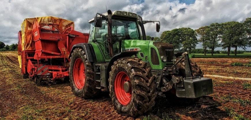 Landwirtschaftsrecht, Höfeordnung, Hofnachfolger, Hofübergabe