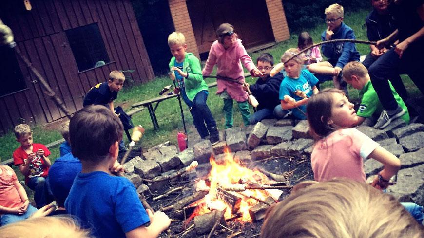 Ein großartiges Erlebnis für die Kleinen: Das Lager im Wildpark Eekholt (Foto: DLRG)