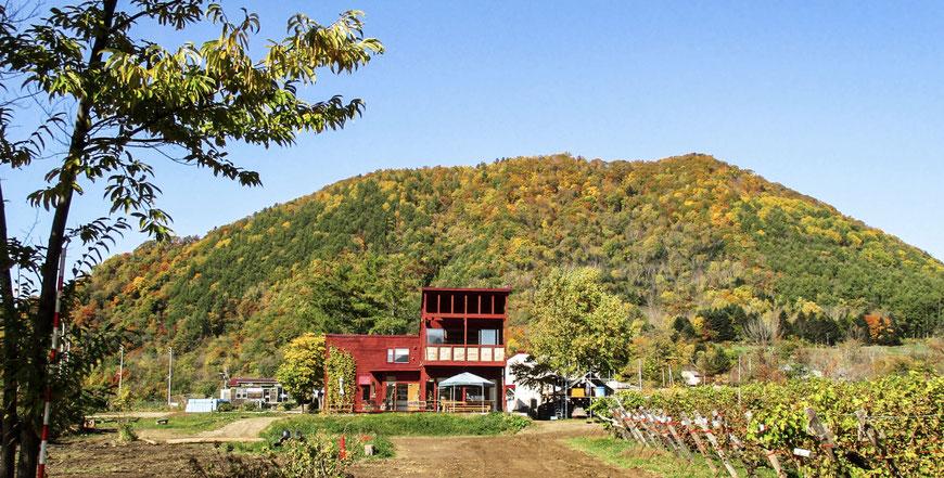 秋の八剣山ギャラリー