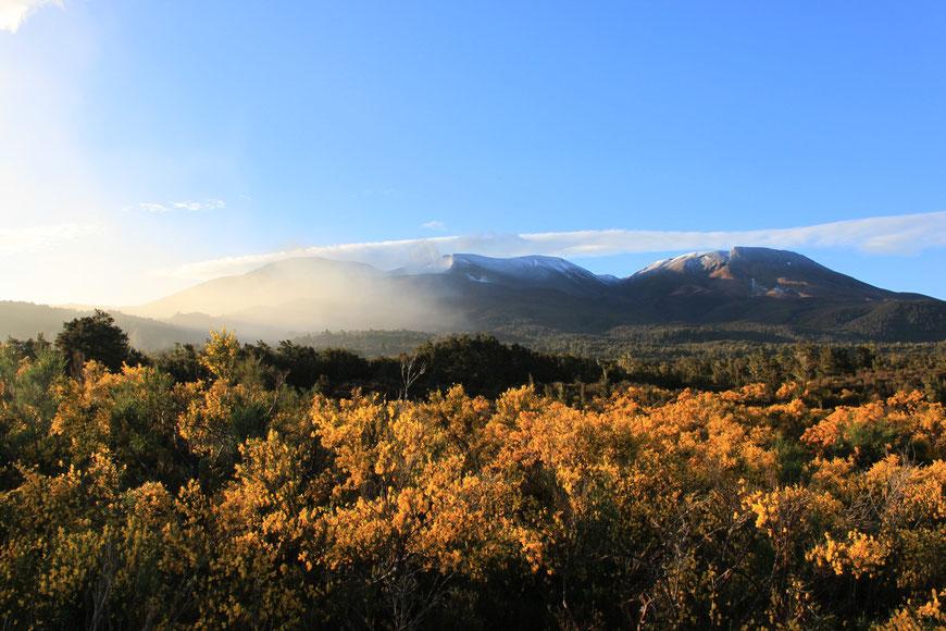 Tongariro Nationalpark, Neuseeland (c) Salomé Weber