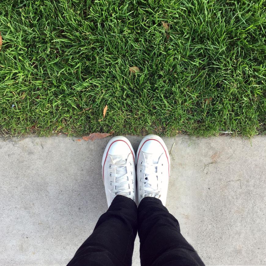 Das Gras ist immer grüner auf der anderen Seite. (c) Salomé Weber