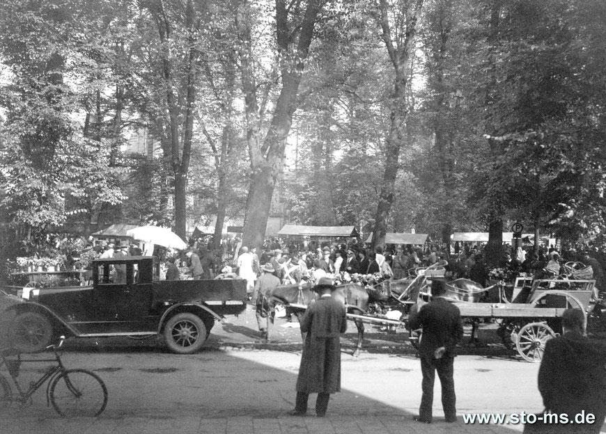 Markttag am Domplatz