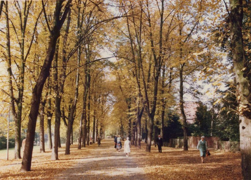 Idylle - In der Promenade im Herbst 1978