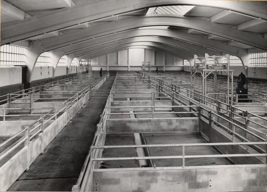 Viehhalle um 1970 - Foto Stadtarchiv