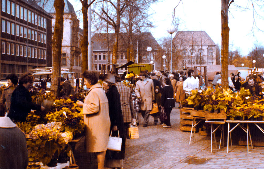 Der Wochenmarkt auf dem Domplatz mit einfach ausgestatteten Ständen