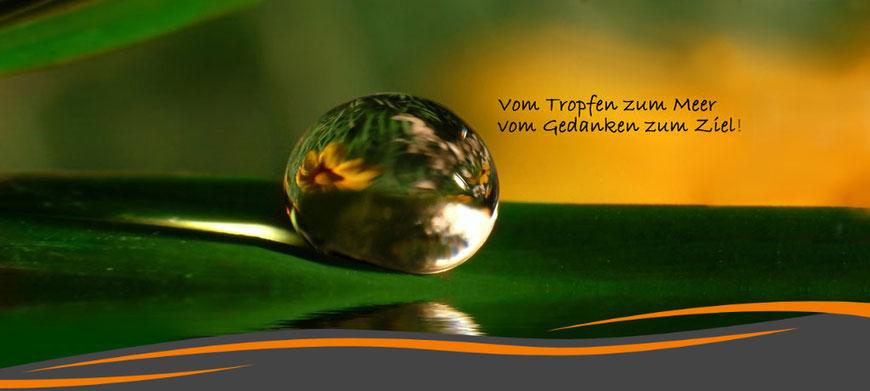NAET, Vitalfeldtherapie, Theralogy, Kinesiologie, Ernährungsberatung, Tirol