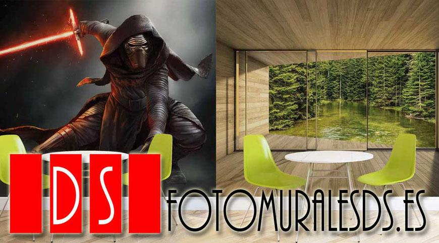 JBravo Pintores y FotomuralesDS decoración