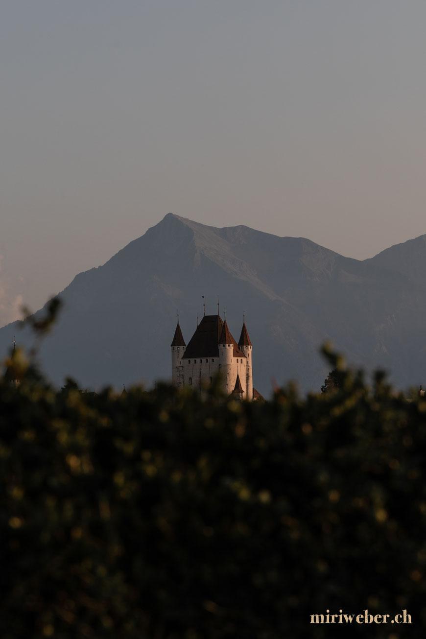 Schloss Thun, Hotel Schloss Thun, übernachten im Schloss, Thunersee, Ausflug, Content Creation Schweiz, Travel Blog Schweiz