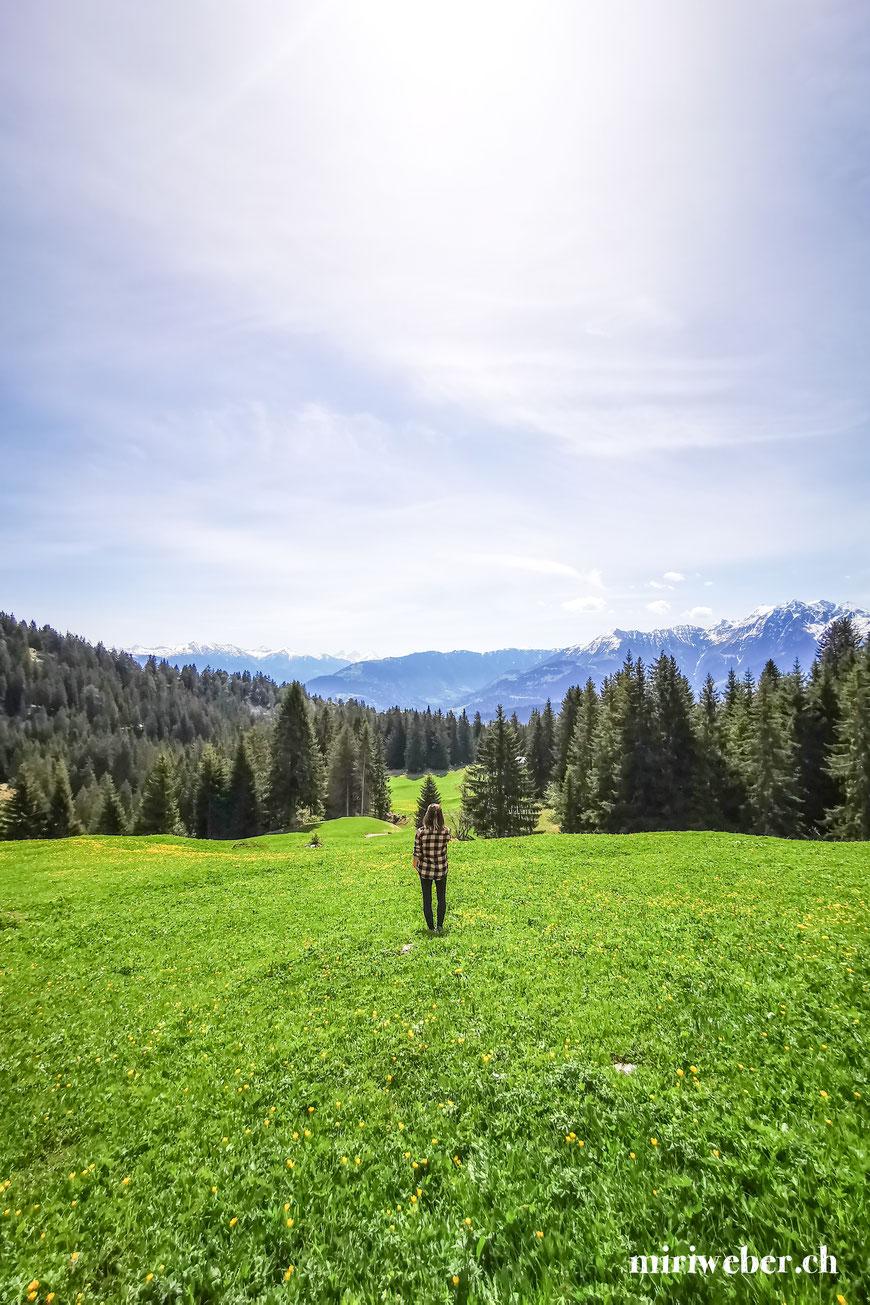 Flims, Familienblog, Mama Blog, Wandertipps, einfache Wanderung, kurze Wanderung, Laax, Falera, Tipps, mit Kindern, Schweiz