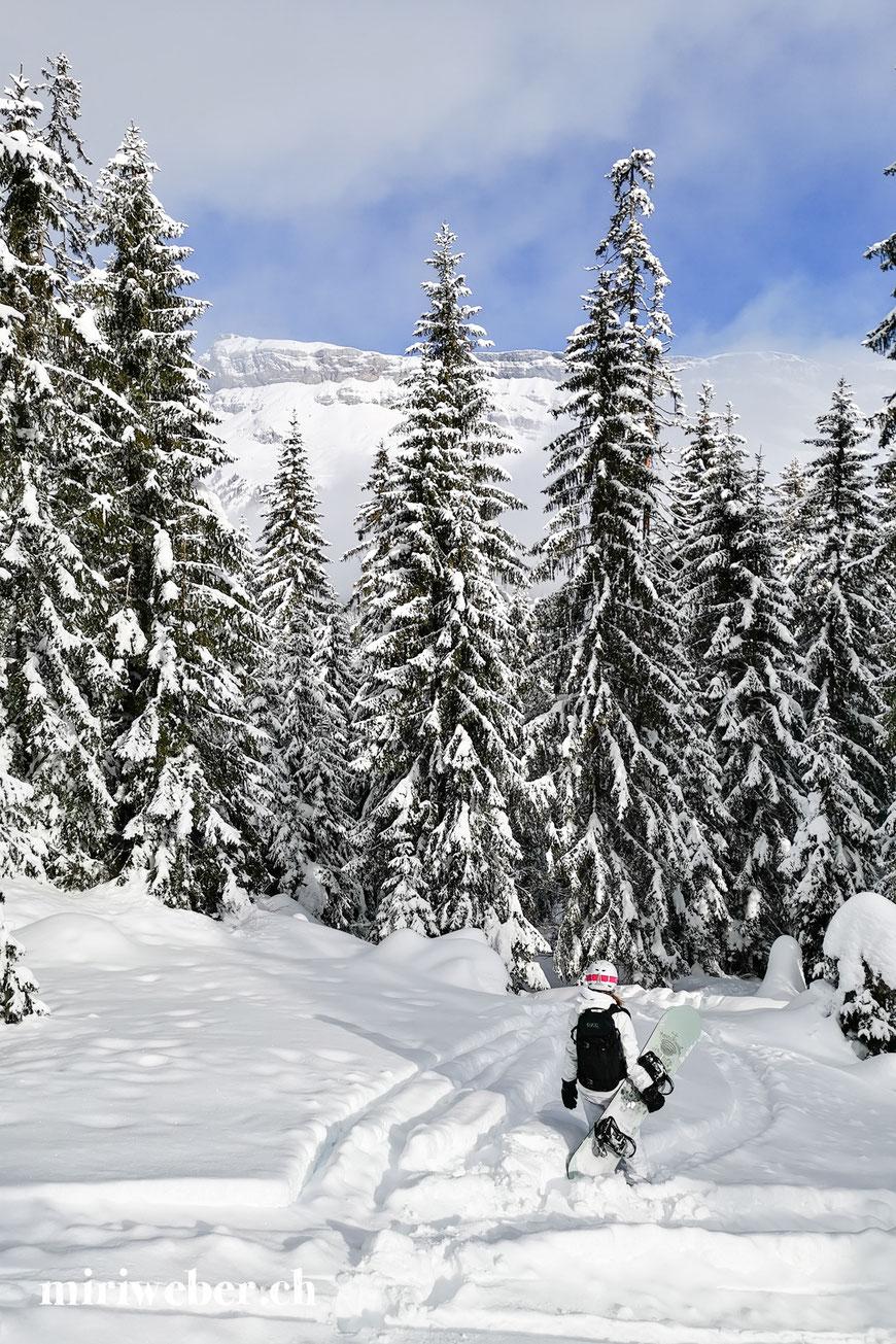 Skigebiet, Flims, Flimser Talabfahrt, Travel Blog Schweiz