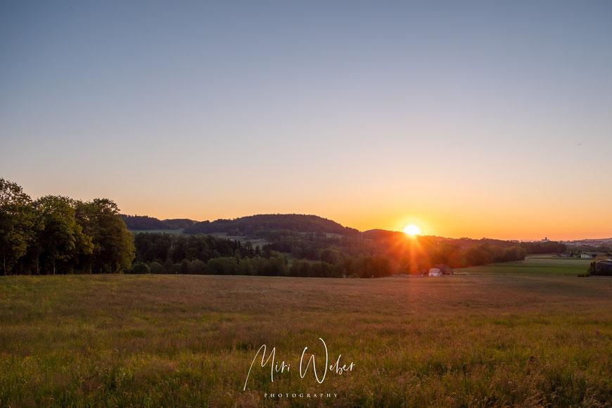 Abendsonne in Jonschwil, Sunset, Sonnenuntergang, Travel Blog Schweiz