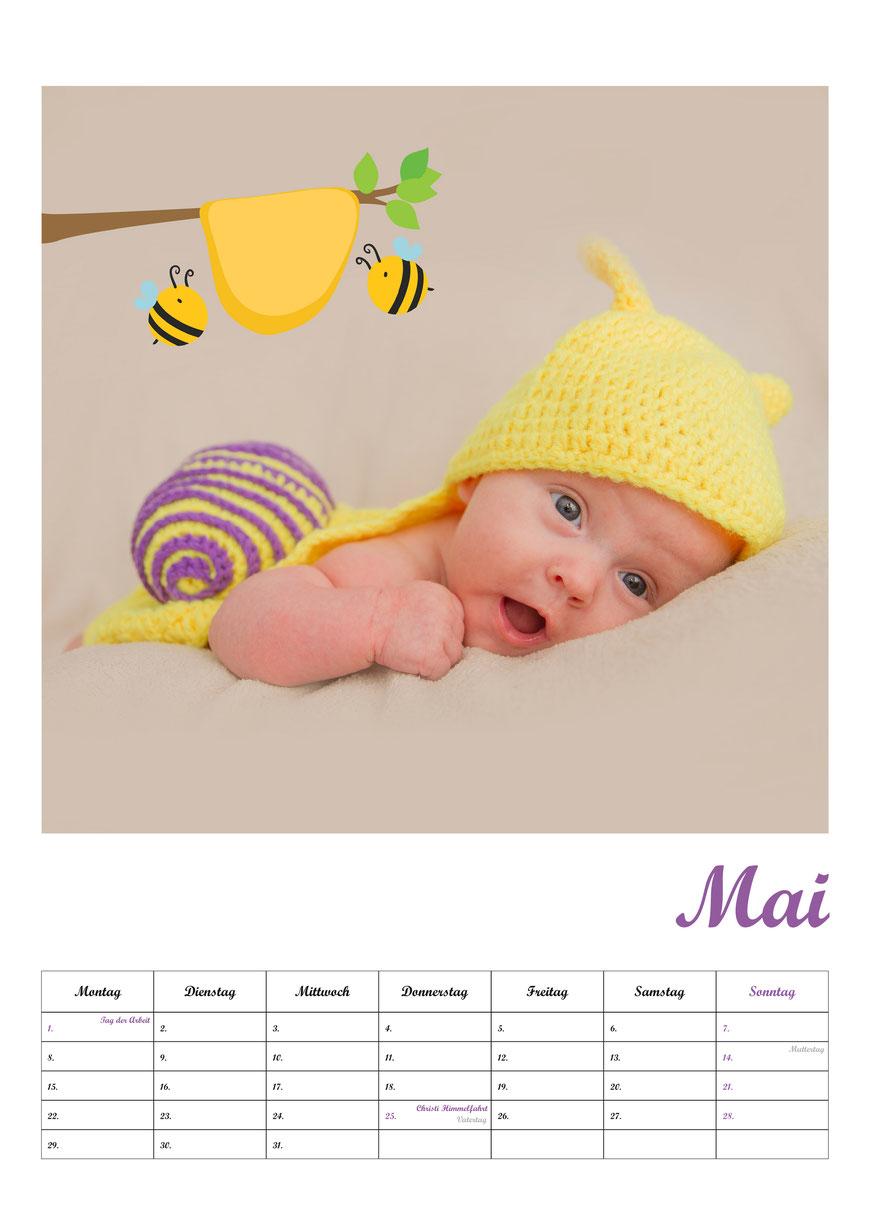 Fotokalender Neugeborenenshooting Babyfotos Mai