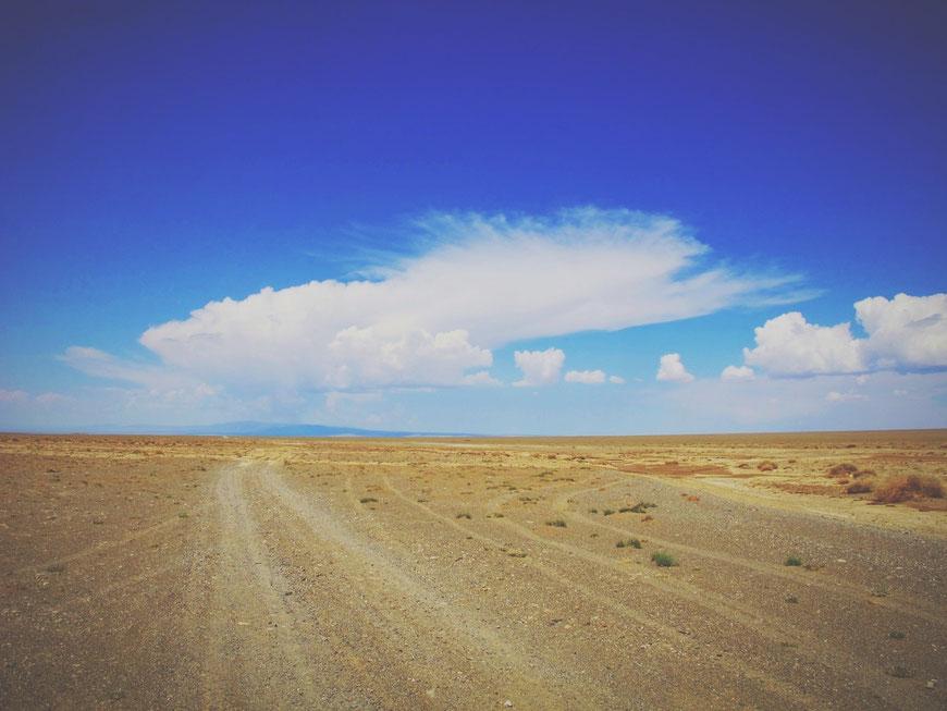 bigousteppes mongolie gobi route camion