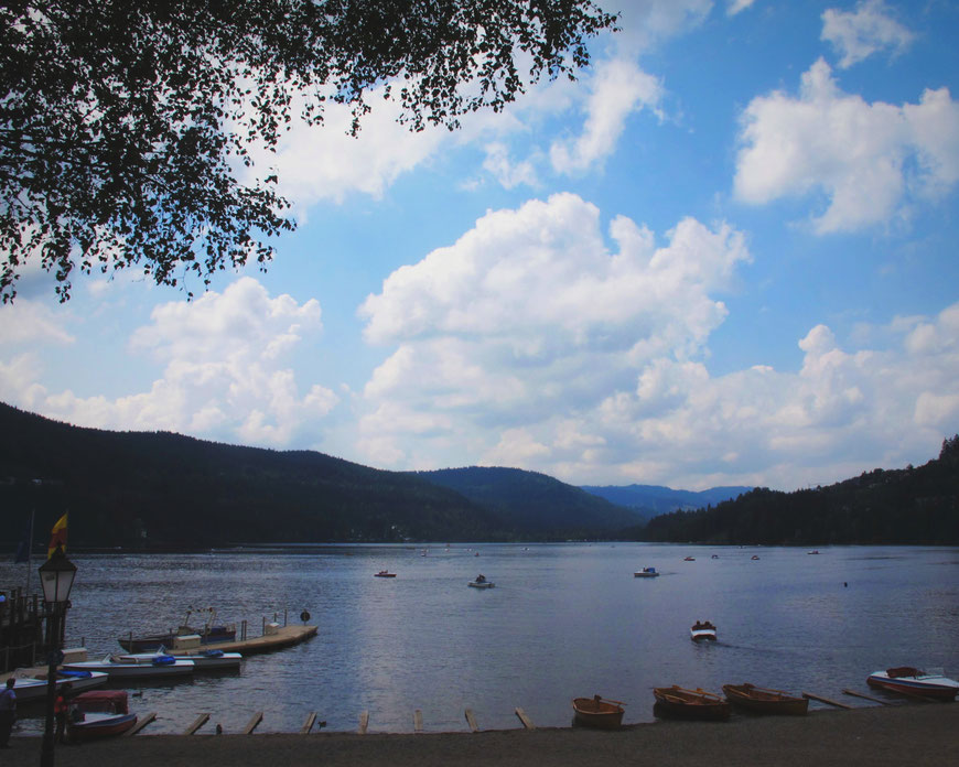 bigousteppes allemagne titisee lac forêt