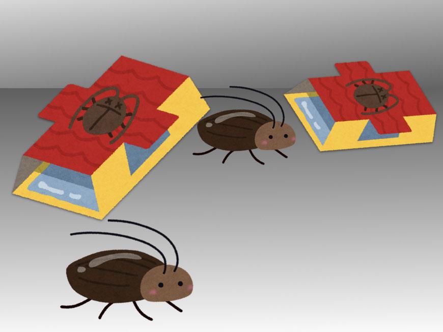 調査用トラップに近付くゴキブリ
